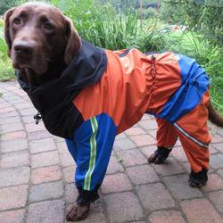 Image de Combinaison de pluie pour chiens